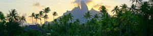 wildlife mountain vacation tour safari adventure travel
